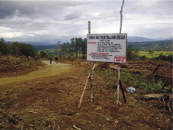 graphic6b Anggar Security dan Aparat : PT. TPL Kembali Serobot Tanah Rakyat